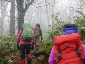 風もなくて湿度が高い!登山道はドロドロ。やはり長靴最強です笑