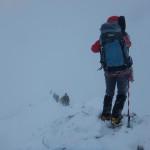稜線も時々ハイマツ歩きを強いられました。