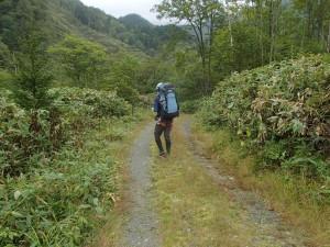 神居山荘からペテガリ山荘まで一山超えて2時間半。長い!