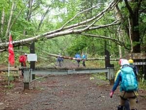 Co750まで林道を使い時短になるかと頂上集合を11:30に設定しましたが…早かった。
