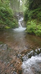 茅刈別川第三支川に入渓。たまにこんな滝が出ますが・・・