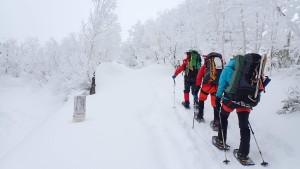 前日からの降雪でパフパフの雪質。